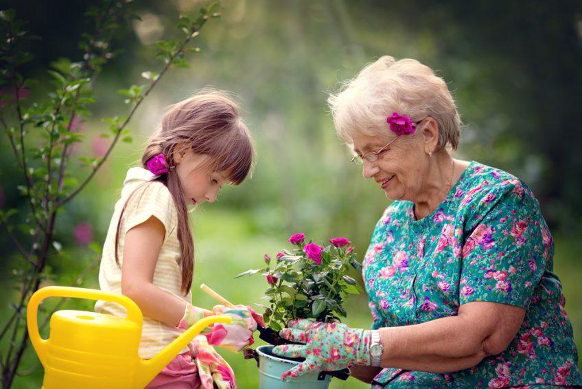 Grandparents Rights In Australia